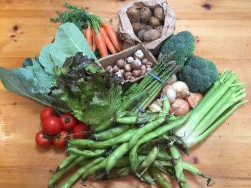 Delightful, fresh veg (yes, I should have cancelled...)